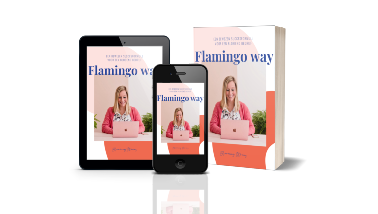 Flamingo Way Cover ebook